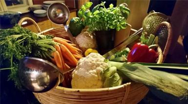 Vegetarisch-Vegan